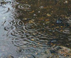 雨の日の過ごし方 一人